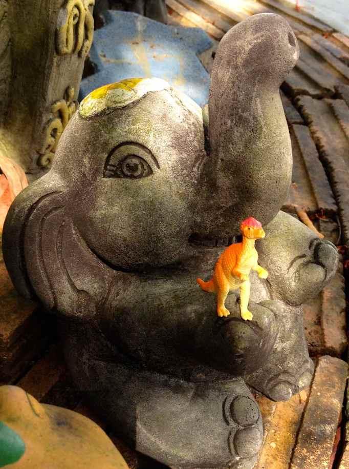 IMG_7793 elephant