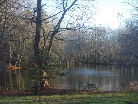 Broad pond offers a wonderful place to ponder things or to prepare for your next film role.