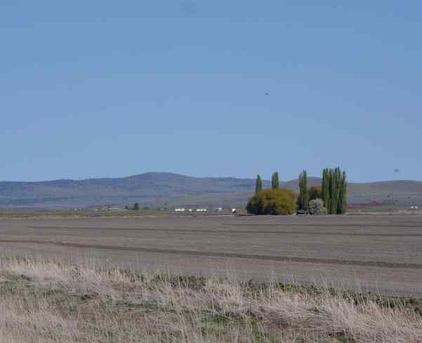 Lower Klamath NWR and Tule Lake NWR
