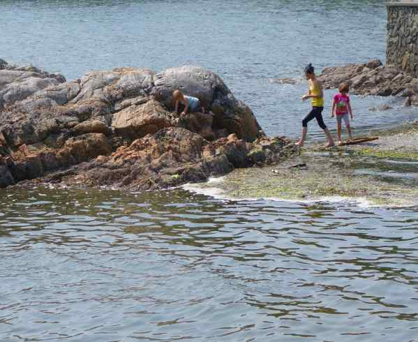I wonder what is it about rocks and water that attracts kids to them?