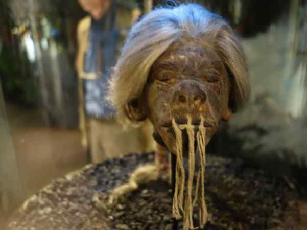 We had just seen this shrunken head in the museum.  That head used to belong to some poor soul, and it had been regular size and attached to a living body. They have about five of these tiny heads on display.