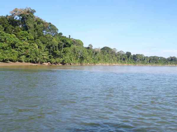"On the Madre de Dios River (that means ""mother of god river,"" I think), it strikes me: how nice to name a river for the mother of god. She deserves a lot of credit, right?"