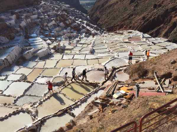 Well, I found out that salt pans aren't actually pans made of salt. No, salt pans are wide, flat, depressions in the ground that hold salt water.